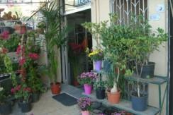 Shop For Rent In Elissar
