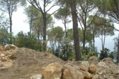Land For Sale In Oyoun – Broumana