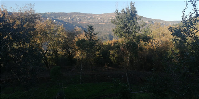Land For Sale In Jezzine