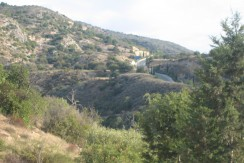 Land for Sale in Latchi