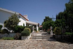 Vineyard farm for sale in Portugal
