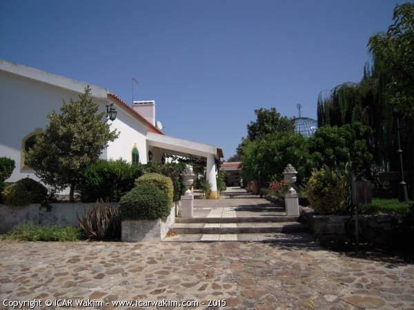 Vineyard farm for sale in Portugal